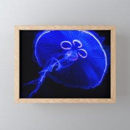 Jelly Framed Mini Art Print
