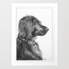 Tegan the dog Art Print