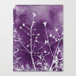 Ultra Violet Botanical Art Canvas Print