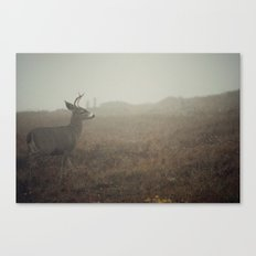 Places to Go Canvas Print