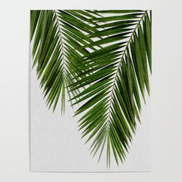 Palm Leaf II Poster