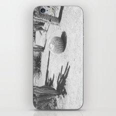 Cacti - in Black & White iPhone & iPod Skin