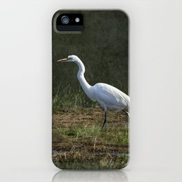 Egret Walking iPhone Case