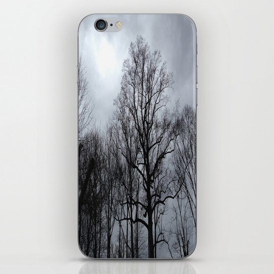 Winter Storm iPhone & iPod Skin