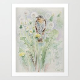 Flycatcher Wildlife bird watercolor painting Art Print