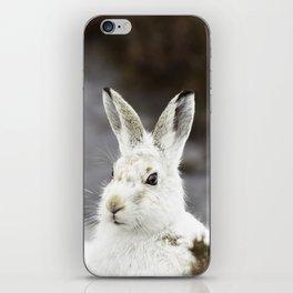 white mountain hare iPhone Skin