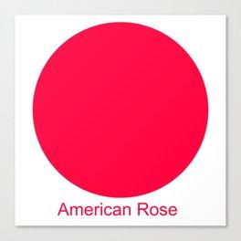 American Rose Canvas Print