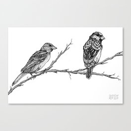 Two Sparrows by Sketchy Reputation Canvas Print