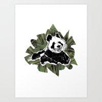 Panda + Bamboo Art Print
