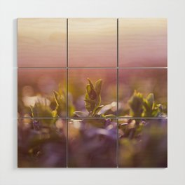 Above the clouds Wood Wall Art