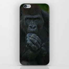 Lope The Gorilla Looking At You iPhone Skin