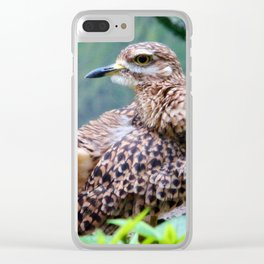 Spotted Dikkop Clear iPhone Case