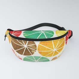 Grungy cartwheels Fanny Pack
