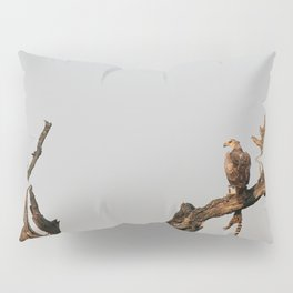 Hawk Eagle with its Catch Pillow Sham