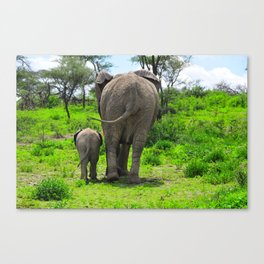 Mother Elephant and Child in Tanzania Canvas Print