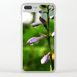Bells & Dew Clear iPhone Case
