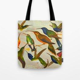 Translate Album de aves amazonicas - Emil August Göldi - 1900 Colorful Hummingbirds Tote Bag