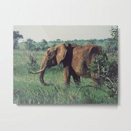 Vintage Africa 08 Metal Print