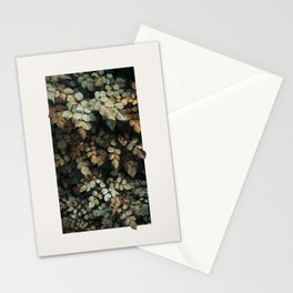 Growth (Autumn) Stationery Cards