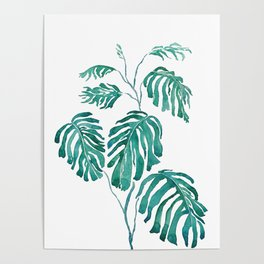 Monstera painting 2017 Poster
