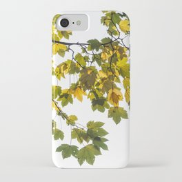 Green And Yellow Maple Leaf iPhone Case