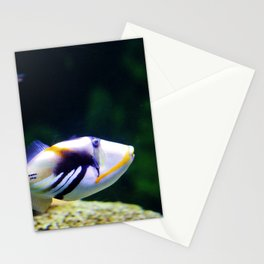 Picasso Triggerfish Stationery Cards