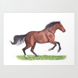 Horse colored pencil drawing Art Print