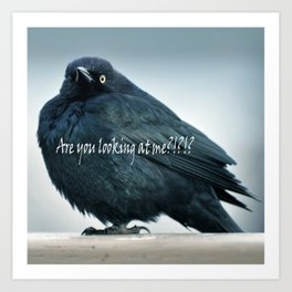 Are You Looking At Me???? Art Print