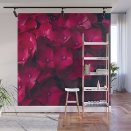 Red Hydrangea Wall Mural