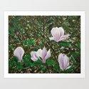 Magnolias by alaidig