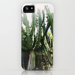 Cactus Desert Photography iPhone Case
