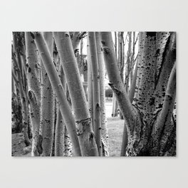 making a stand Canvas Print