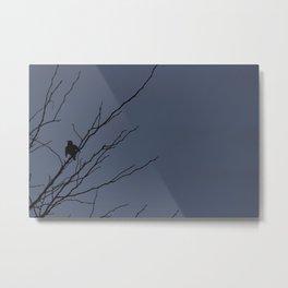 Little Black Bird: blue Metal Print
