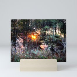 Sunset Forest : Where The Fairies Dwell Mini Art Print