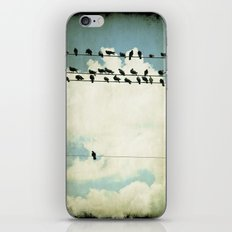 Many and One iPhone & iPod Skin