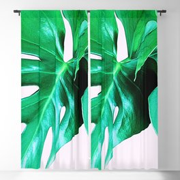 Cheese Plant Leaves Blackout Curtain