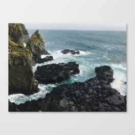 Icelandic Bird Cliffs Canvas Print