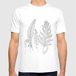 Minimal Line Art Fern Leaves T-shirt