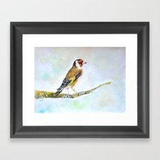 European goldfinch on tree branch Framed Art Print