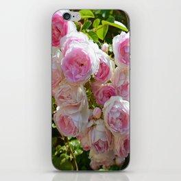 Cascade iPhone Skin