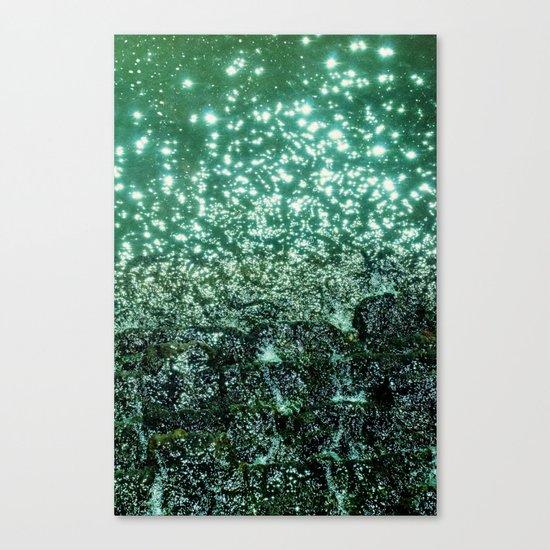 NATURAL SPARKLE Canvas Print