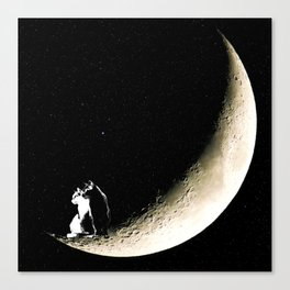 Moon and cats Canvas Print