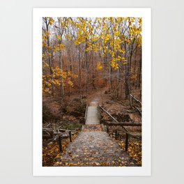Autumn Woods I Art Print