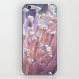 Anemone (?) iPhone Skin