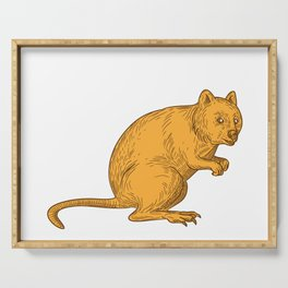 Quokka Drawing Color Serving Tray