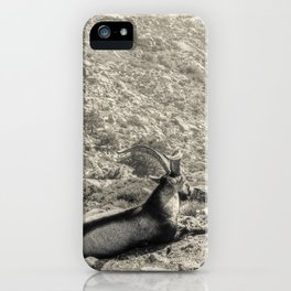 The old king iPhone Case