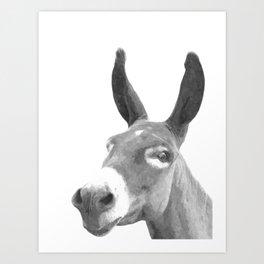 Black and white donkey Art Print