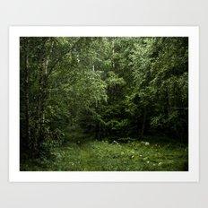Green No.3 / Forest Art Print
