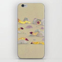 White-eyed Moray Eels iPhone Skin