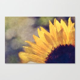 Another sunflower - Flower Flowers Summer Canvas Print